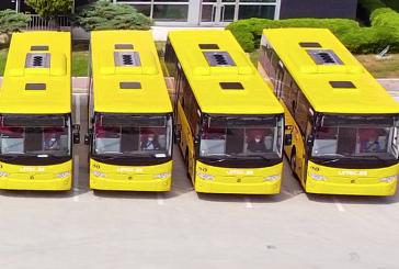 TEMSA, 22 adetlik  Belçika teslimatı